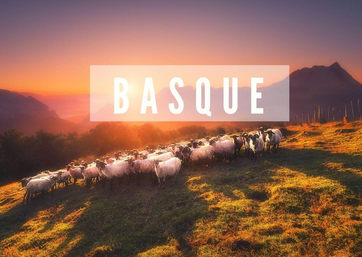 Cours de Basque